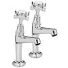 Tre Mercati - Imperial High Neck Kitchen Pillar Taps - Chrome - 1079 profile small image view 1
