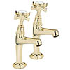 Tre Mercati - Imperial High Neck Kitchen Pillar Taps - Antique Gold - 1099 profile small image view 1