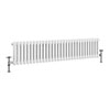 Keswick 300 x 1340mm Cast Iron Style Traditional 2 Column White Radiator profile small image view 1
