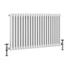 Keswick 600 x 988mm Cast Iron Style Traditional 2 Column White Radiator profile small image view 1