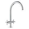Grohe Atrio Two Handle Kitchen Sink Mixer - Chrome - 30362000 profile small image view 1