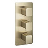 JTP Hix Brushed Brass Triple Outlet Thermostatic Concealed Shower Valve Vertical profile small image view 1