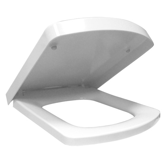 Lovely Large D Shaped Toilet Seat