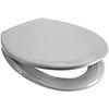 Euroshowers Rainbow Soft Close Toilet Seat - Light Grey - 84320 profile small image view 1
