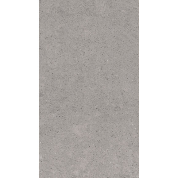 RAK - 6 Lounge Light Grey Porcelain Unpolished Tiles - 300x600mm - 9GPD-59UP Large Image