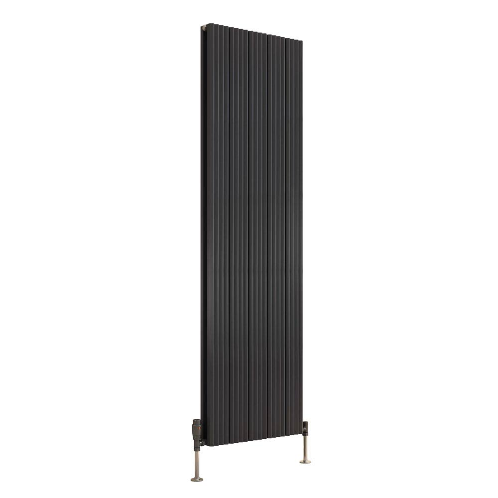 Reina Andes Vertical Double Panel Aluminium Radiator - Anthracite  Feature Large Image