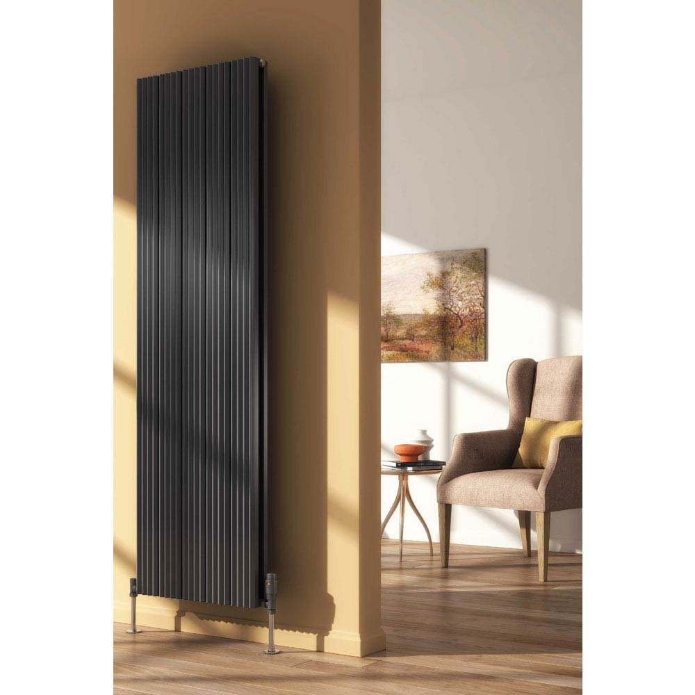 Reina Andes Vertical Double Panel Aluminium Radiator - Anthracite Large Image