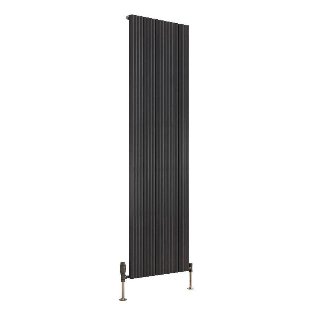 Reina Andes Vertical Single Panel Aluminium Radiator - Anthracite Large Image