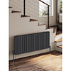 Reina Alco Horizontal Aluminium Radiator (600mm High) - Anthracite profile small image view 1