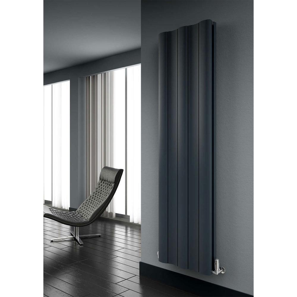 Reina Gio Vertical Double Panel Aluminium Radiator - Anthracite Profile Large Image