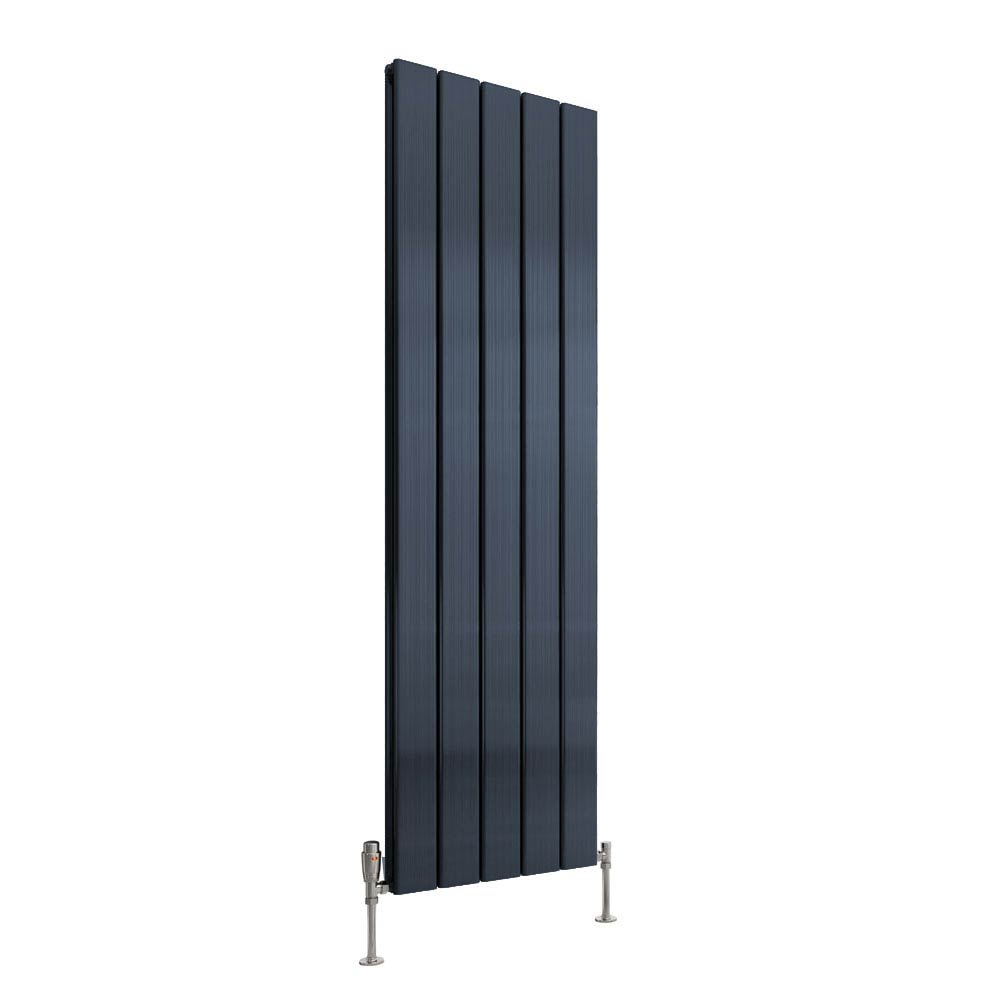 Reina Stadia Vertical Double Panel Aluminium Radiator - Anthracite Large Image