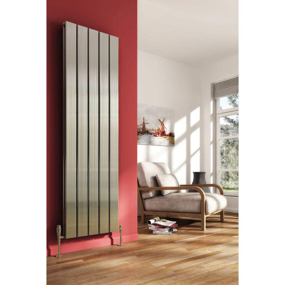 Reina Stadia Vertical Double Panel Aluminium Radiator - Polished profile large image view 1