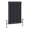 Keswick 600 x 423mm Vertical Radiator Anthracite 2 Column (9 Sections) profile small image view 1