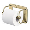 Burlington Gold Toilet Roll Holder - A5-GOLD profile small image view 1