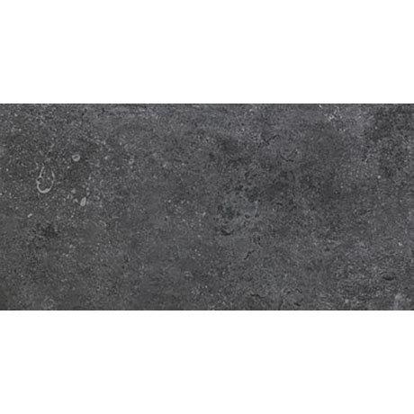 RAK Fashion Stone Grey Wall and Floor Tiles 300 x 600mm
