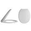 Alaska Standard Soft Close Top Fixing Toilet Seat - AL08 profile small image view 1