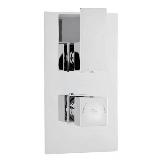 Hudson Reed Art Twin Concealed Thermostatic Shower Valve w/ Rectangular Slider Rail Kit profile large image view 3