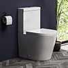 Arezzo BTW Close Coupled Toilet + Soft-Close Seat profile small image view 1