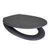 Arezzo Matt Grey Soft Close Toilet Seat profile small image view 1