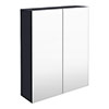 Arezzo 600 Matt Blue 2-Door Mirror Cabinet profile small image view 1
