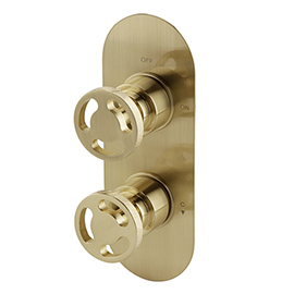 Arezzo Brushed Brass Industrial Style Round Modern Twin Concealed Shower Valve