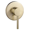 Arezzo Brushed Brass Round Concealed Manual Shower Valve profile small image view 1