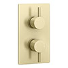 Arezzo Brushed Brass Round Modern Twin Concealed Shower Valve with Diverter profile small image view 1