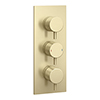 Arezzo Brushed Brass Round Modern Triple Concealed Shower Valve profile small image view 1