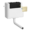 Arezzo Concealed WC Cistern inc. Brushed Brass Square Flush Plate profile small image view 1