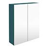 Arezzo 600 Matt Green 2-Door Mirror Cabinet profile small image view 1