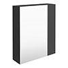 Brooklyn 600mm Gloss Grey Bathroom Mirror & Fascia Cabinet profile small image view 1