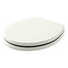 Bayswater Pointing White Fitzroy Soft Close Toilet Seat profile small image view 1