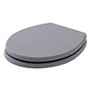 Bayswater Plummett Grey Fitzroy Soft Close Toilet Seat profile small image view 1