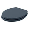 Bayswater Stiffkey Blue Fitzroy Soft Close Toilet Seat profile small image view 1