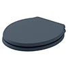 Bayswater Stiffkey Blue Porchester Soft Close Toilet Seat profile small image view 1