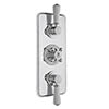 Bayswater White Triple Concealed Thermostatic Shower Valve profile small image view 1