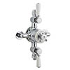 Bayswater White Triple Exposed Thermostatic Shower Valve profile small image view 1