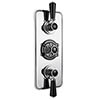 Bayswater Black Triple Concealed Thermostatic Shower Valve profile small image view 1