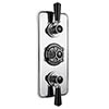 Bayswater Black Triple Concealed Thermostatic Shower Valve with Diverter profile small image view 1