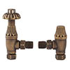Bayswater Antique Brass Angled Thermostatic Radiator Valves profile small image view 1