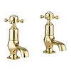 Crosswater Belgravia Unlacquered Brass Crosshead Cloakroom Basin Taps - BL150DNQ profile small image view 1