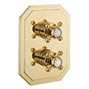 Crosswater Belgravia Unlacquered Brass Crossbox 2 Outlet Multi-flow Trim Set profile small image view 1
