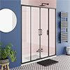 Turin Matt Black 1700 Double Sliding Shower Door profile small image view 1