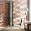 Buxton 1800 x 318mm Raw Metal (Lacquered) 2 Column Vertical Radiator profile small image view 1