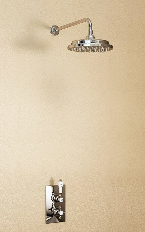 "Burlington Trent Anglesey Concealed Valve w Straight Arm & 9"" Rose - Brass Backplate Large Image"