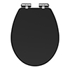 Carlton Soft Close Toilet Seat with Chrome Hinges - Various Colour Options profile small image view 1