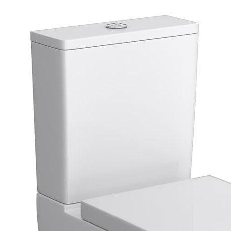 Brooklyn Dual Flush Cistern