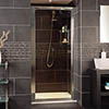 Roman Collage Pivot Shower Door profile small image view 1