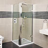 Roman Collage Hinged Shower Door profile small image view 1