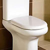 RAK Compact Wrap Over Urea Toilet Seat profile small image view 1